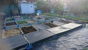 covered allotment with weed membrane