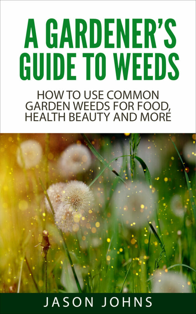 A Gardener's Guide To Weeds