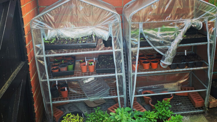 May – What To Do In The Vegetable Garden